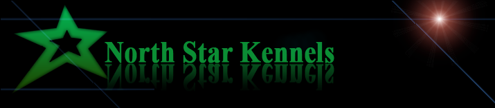 North Star Kennels - Logo